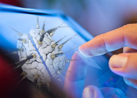 telecharger-cerveau-humain