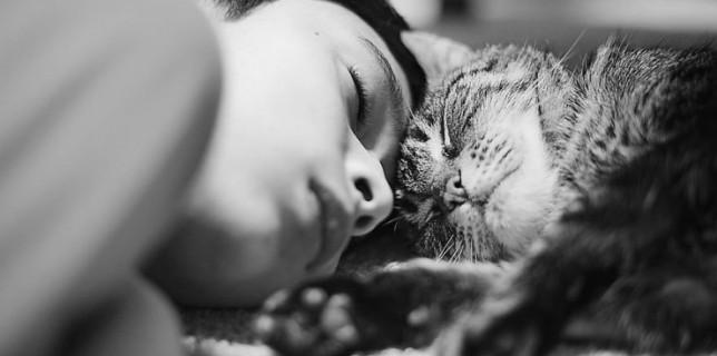 Les plus beaux moments de complicité entre des chats et des enfants