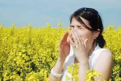 Pollens-risque-allergique-eleve-en-France-metropolitaine_large_apimobile