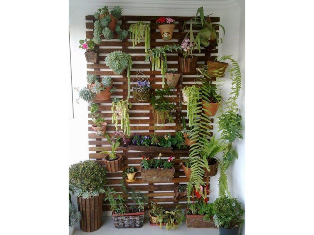 Id es deco pour des plantes d int rieur cocktail - Idee decoratie d interieur ...