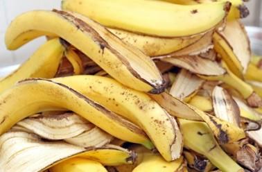 banane_846x492-378x248