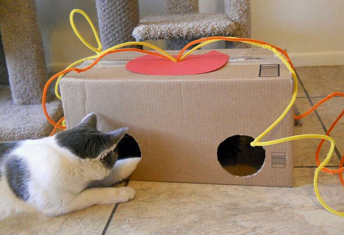 10 mignons jouets pour chats bricoler soi m me cocktail. Black Bedroom Furniture Sets. Home Design Ideas