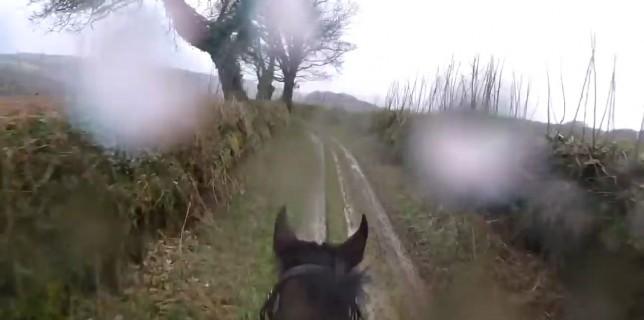 cheval-courir-cavalier-inexperimente-pov