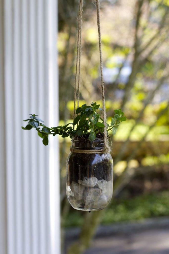 planteur-a-herbes