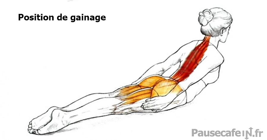 posture-gainage-muscles