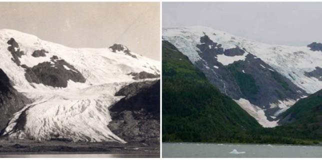 Le glacier Toboggan, Alaska. Juin 1909 - septembre 2000.